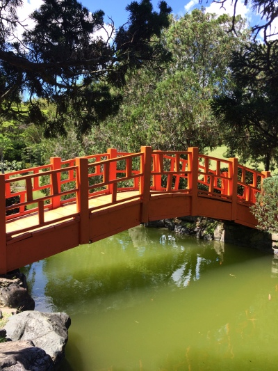 Bridge in the Japanese Gardens - Botanical Gardens