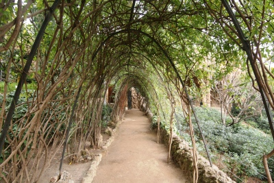 The garden outside Casa Gaudi in Park Guell, Barcelona