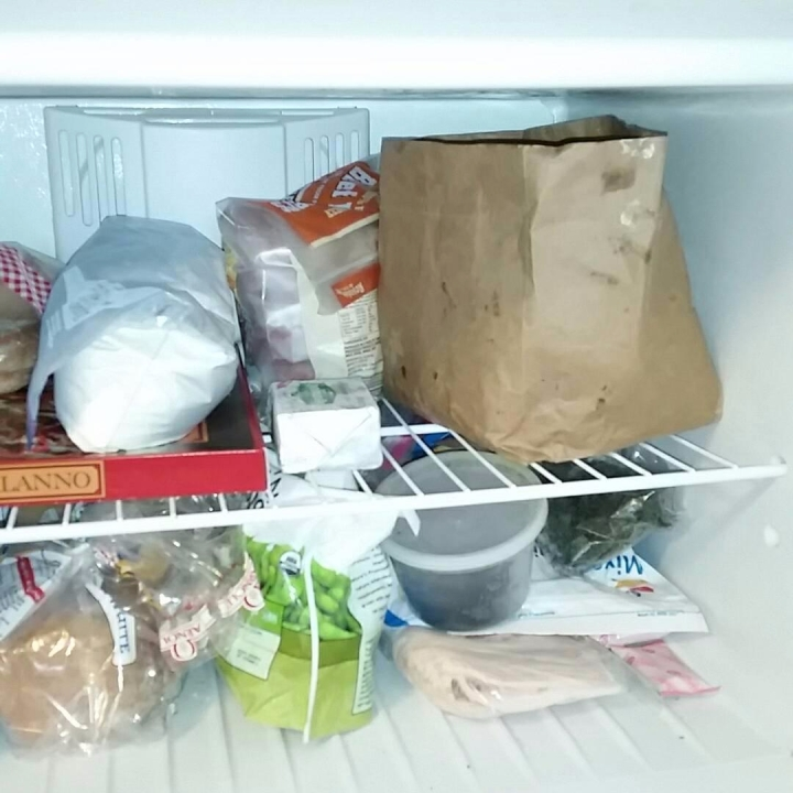 freezer compost