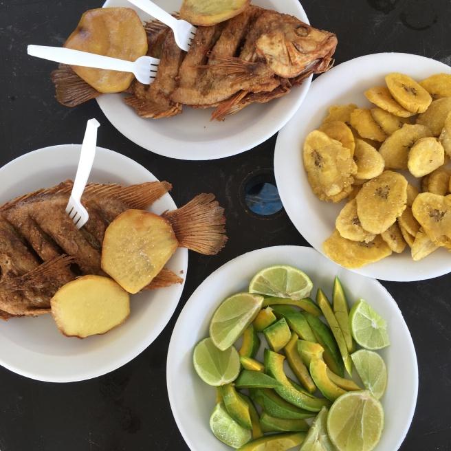 Boca Chica Fish